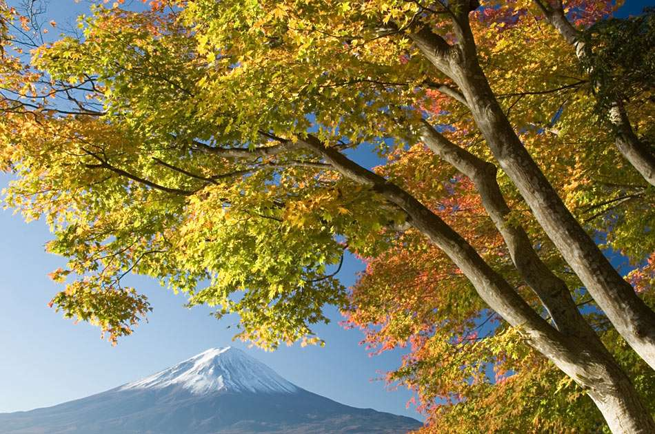 Mount Fuji - Mount Fuji (Fuji-san) is the highest mountain in Japan. It is volcano, currently classified as active with a low risk of eruption (10×6)