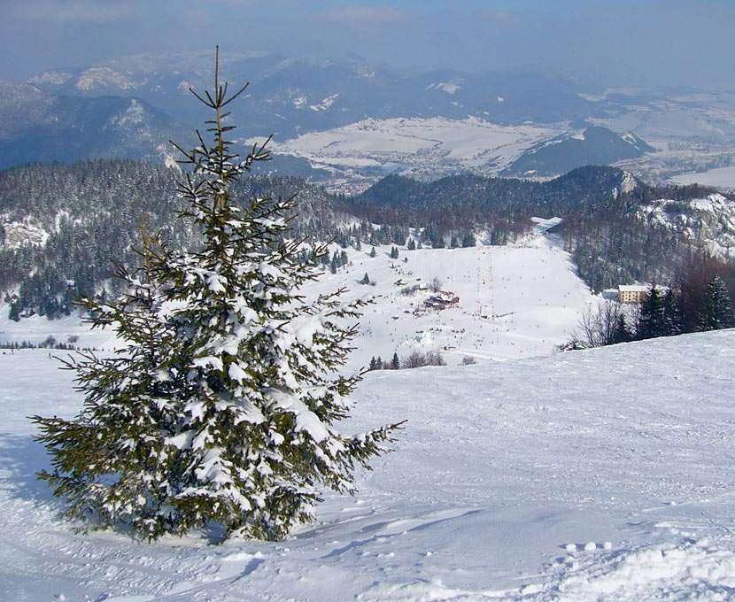 Skidort - Ružomberok (Slovakien) - Skidorten Ski-Park Ružomberok ligger på sluttningarna av Veľká Fatra i höjden mellan 545 och 1209 m över havet (10×8)