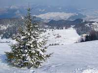 Ski resort - Ružomberok (Slovakia)