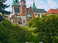 Catedral de Wawel (Polonia)