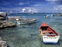 Coast near Bayahibe (Dominican Republic)
