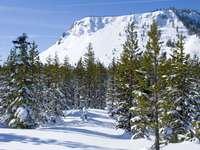 Winter in Cascade Mountains (USA)