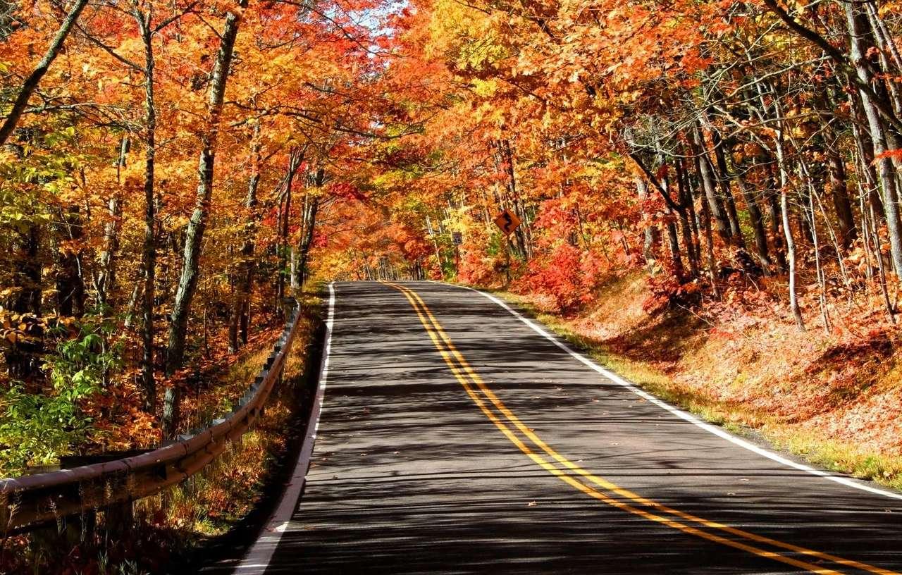 L'automne au Michigan (USA)