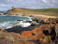Côte de Tasmanie (Australie)
