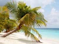 Strand (Malediven)