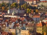 Moldau in Praag (Tsjechië)