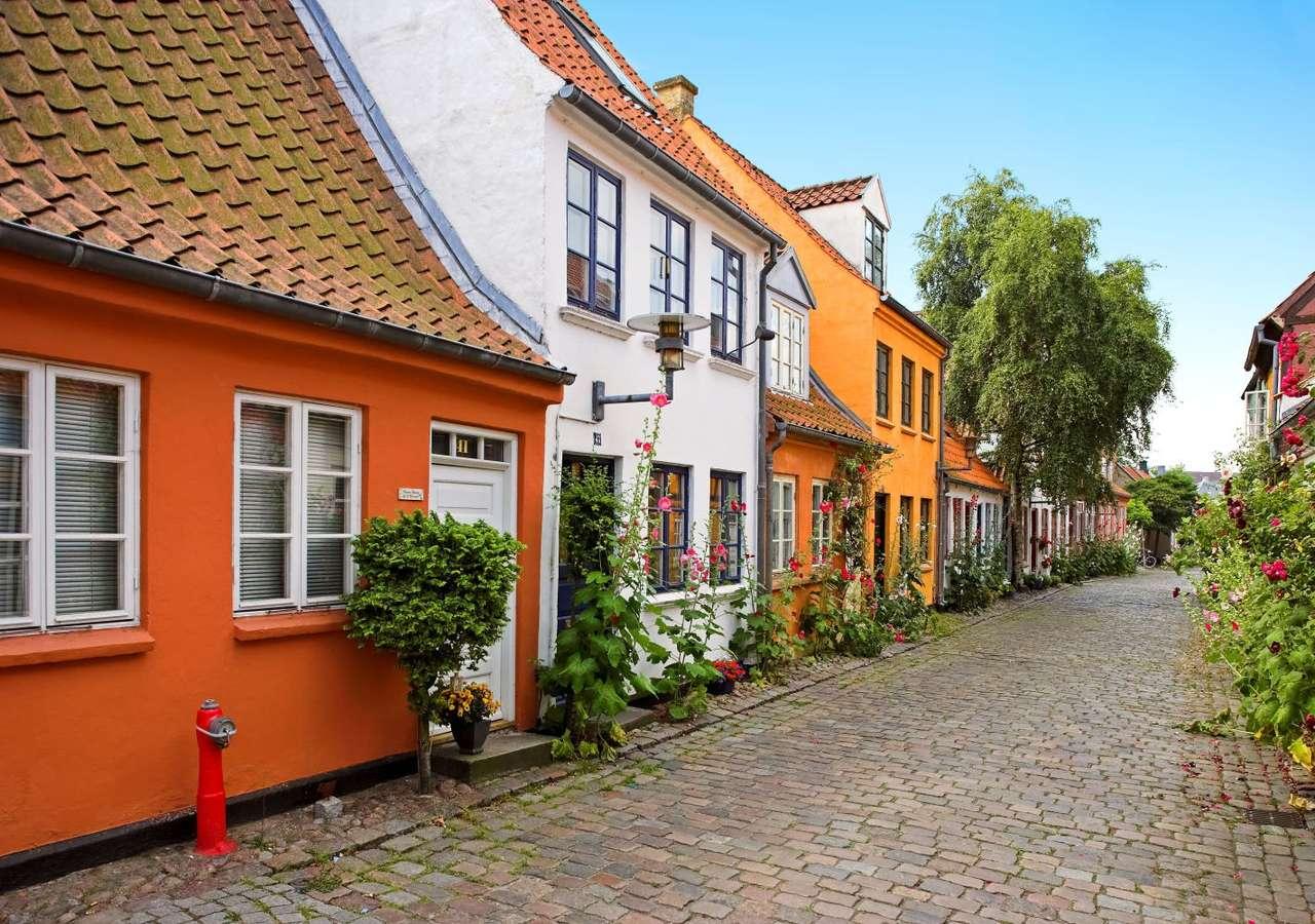 Vecchie case ad Aarhus (Danimarca)