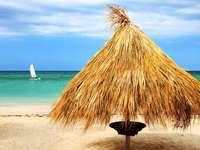 Refugio de ramas de palmera