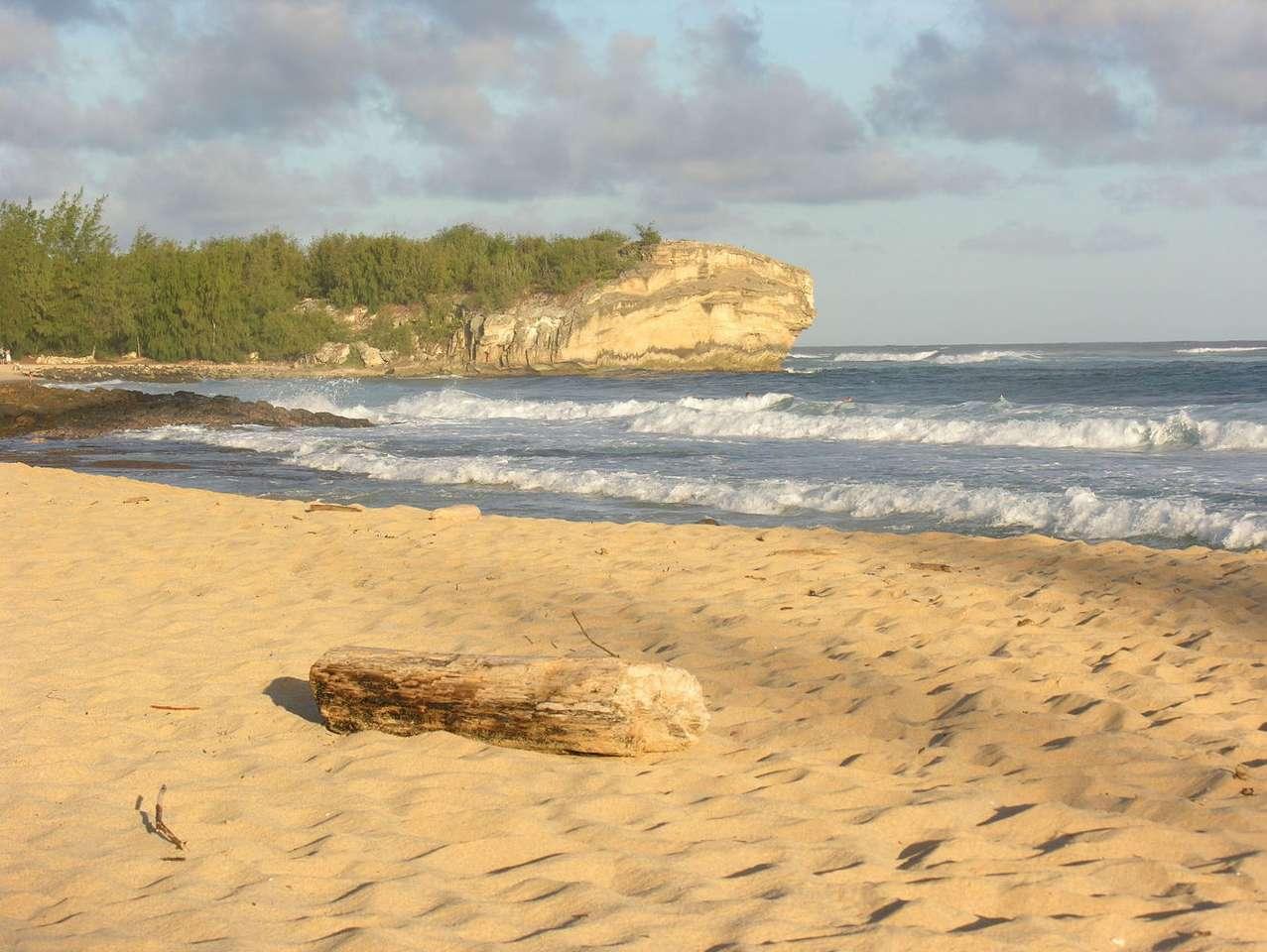 La plage de Kauai (USA)