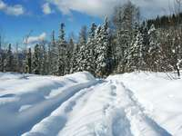 Winter in the Caucasus Mountains