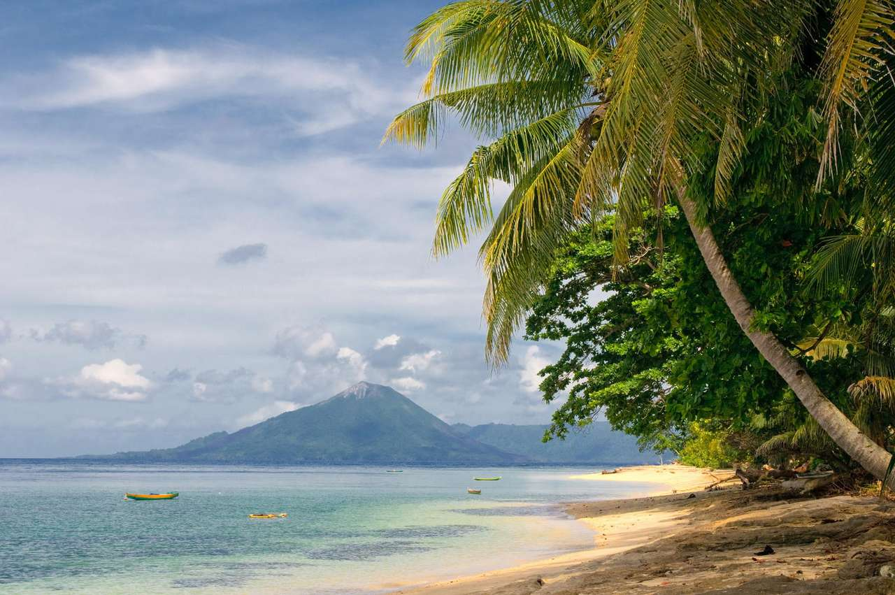 Tropical beach (Indonesia) - The beach on one of the Indonesian Banda Islands. These small islands belong to the Molucas Archipelago. The Banda Islands have become known thanks to nutmeg, which was a very expensive spice in the p (8×5)
