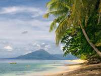 Tropical beach (Indonesia)