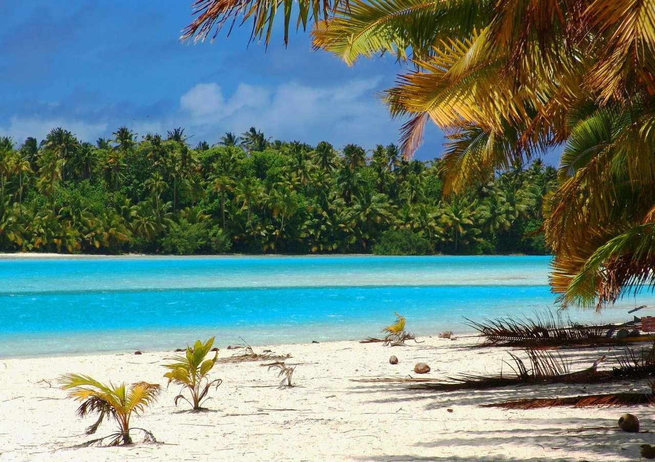 Praia Tropical (Ilhas Cook)