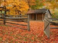Old cabin during fall