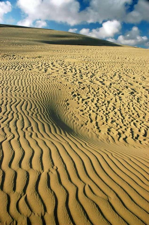 Giant Dune (New Zealand)