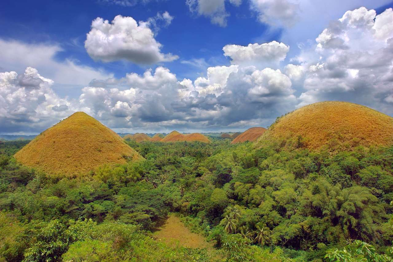 Chocolate Hills (Philippines) - The range of hills on the Philippine island of Bohol owes its name of the Chocolate Hills to the brown color they get during the dry season, when the grass that grows on them gets brown. Over a thousa (12×8)