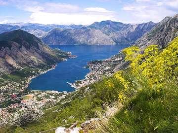 Bay of Kotor Panorama (Montenegro)
