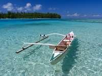 Polynesian fishing boat