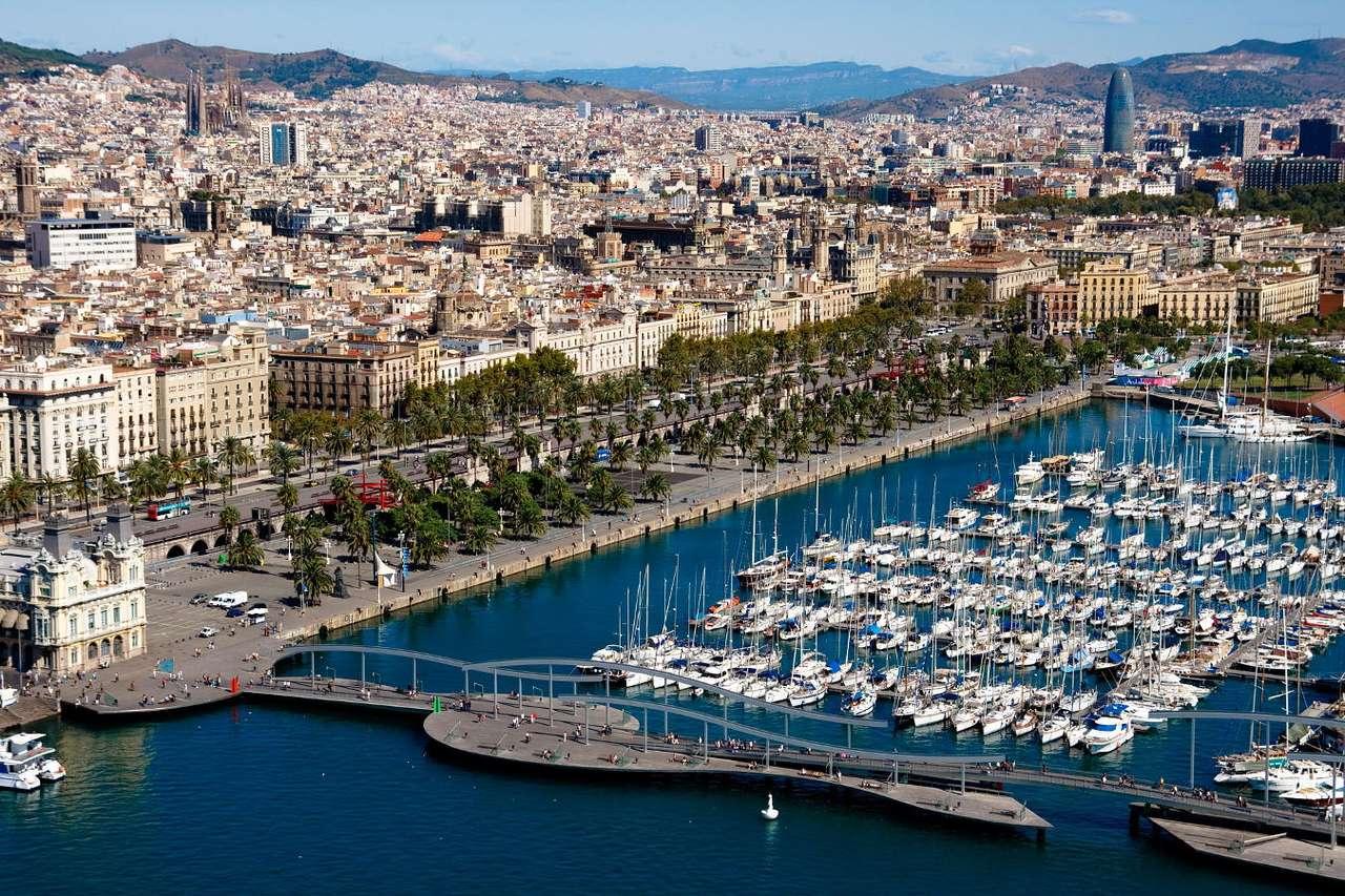 Panorama of Barcelona (Spain)
