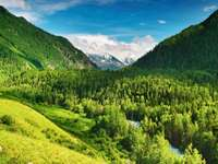 Valley in the Altai Mountains (Russia)