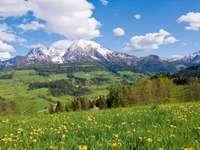 Alpine landscape in spring