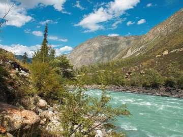 Rapid river in the Altai (Russia)