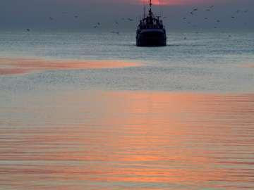 Fishermen coming back to port