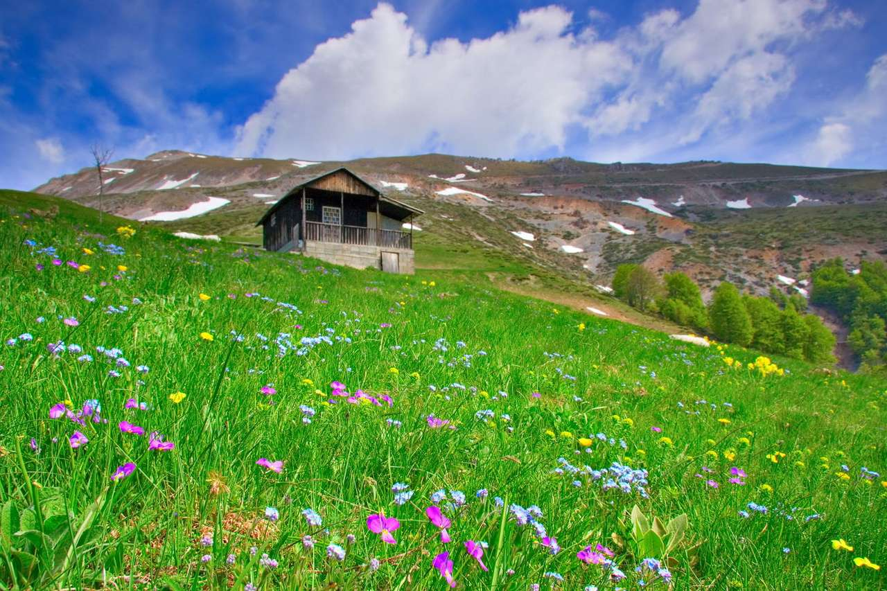 Cabin up in the mountains (Macedonia) - Macedonia is the country with the landscape in which highlands and mountains dominate. Mostly these are young mountain ranges, which results in frequent seismic activity in these areas. Earthquakes st (9×6)