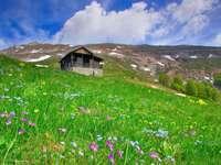 Cabane dans les montagnes (Macédoine)