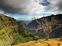 Waimea Canyon på Hawaiiöarna (USA)