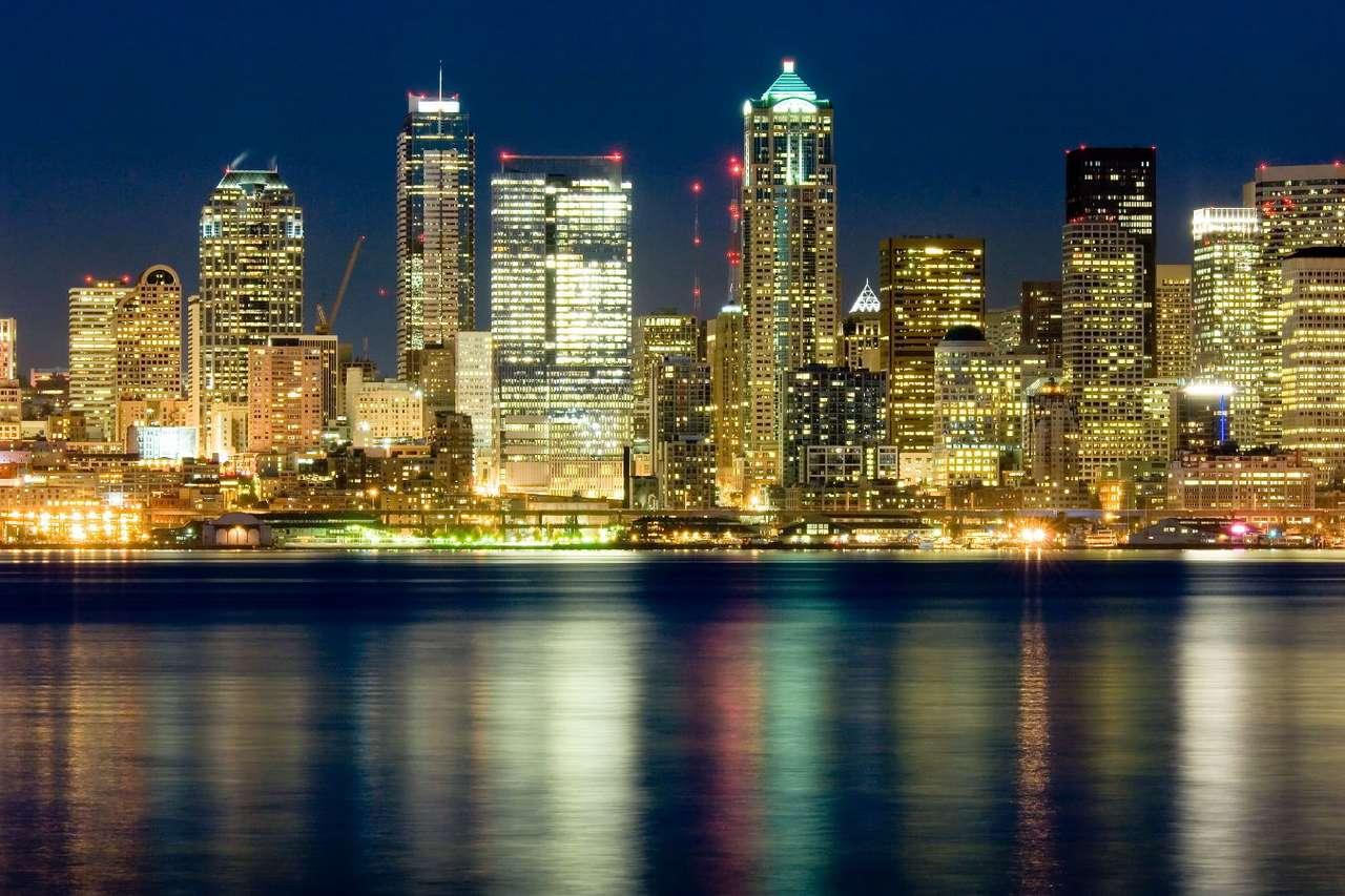 Panorama Seattlu v noci (USA)