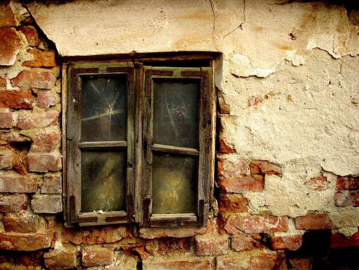 Window of an abandoned homestead