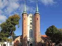Cathédrale Oliwa de Gdańsk (Pologne)