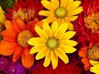 Csokor őszi virágok