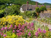 Hus bland blommor i Porlock Weir (Storbritannien)