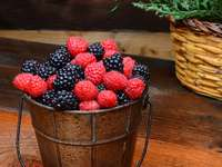 Früchte des Waldes in einem Eimer