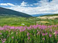 The Rocky Mountains (USA)