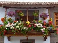 Flowered balcony in Teror (Spain)
