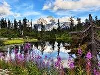 Άποψη του όρους Shuksan και της λίμνης Highwood (ΗΠΑ)