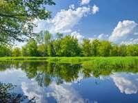 Река Нарев (Полша)