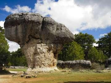 A rock in the Ciudad Encantada National Park (Spain)