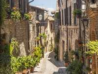 Street in the town of Spello (Italy)