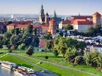 Castillo Real de Wawel (Polonia)