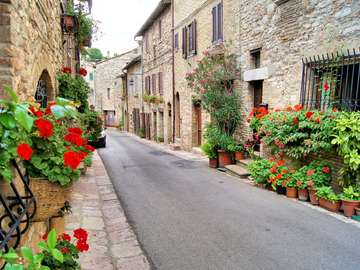 Street in Assisi (Italy)