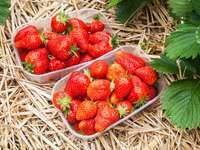 Körbe mit Erdbeeren auf Strohbettwäsche