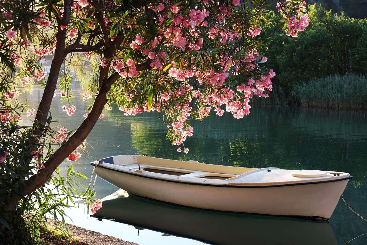 Boot op de Ombla-rivier (Kroatië)