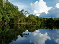 Rio Amazonas (Brasil)