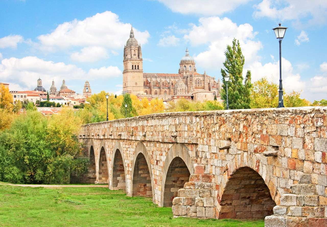 New Cathedral in Salamanca (Spain) - Salamanca is a city inhabited by 130 thousand people, located in the western part of Spain. The city boasts one of the most beautiful old towns on the Iberian Peninsula and it is considered to be the (8×6)