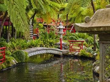 Tropical gardens around Monte Palace on Madeira (Portugal)