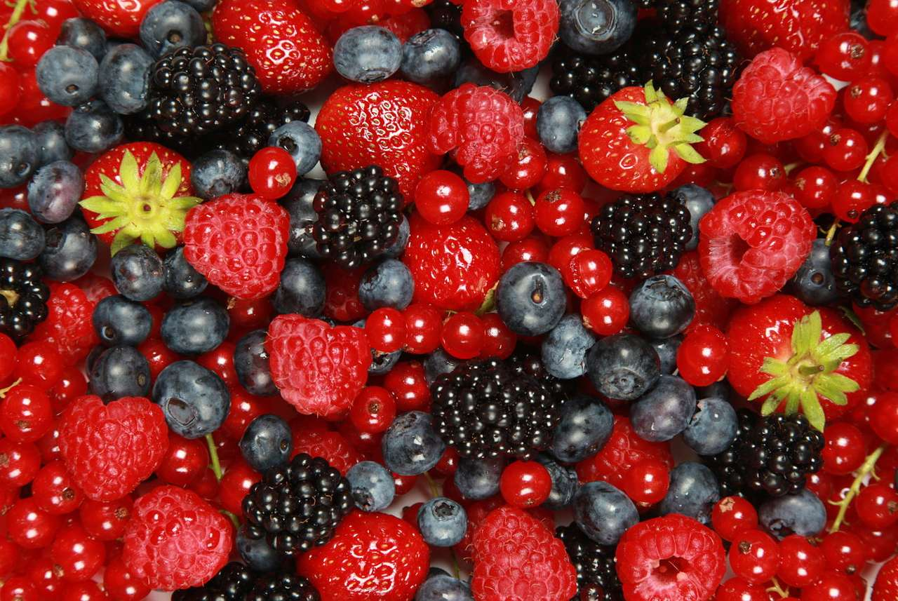 Fruit of the forest